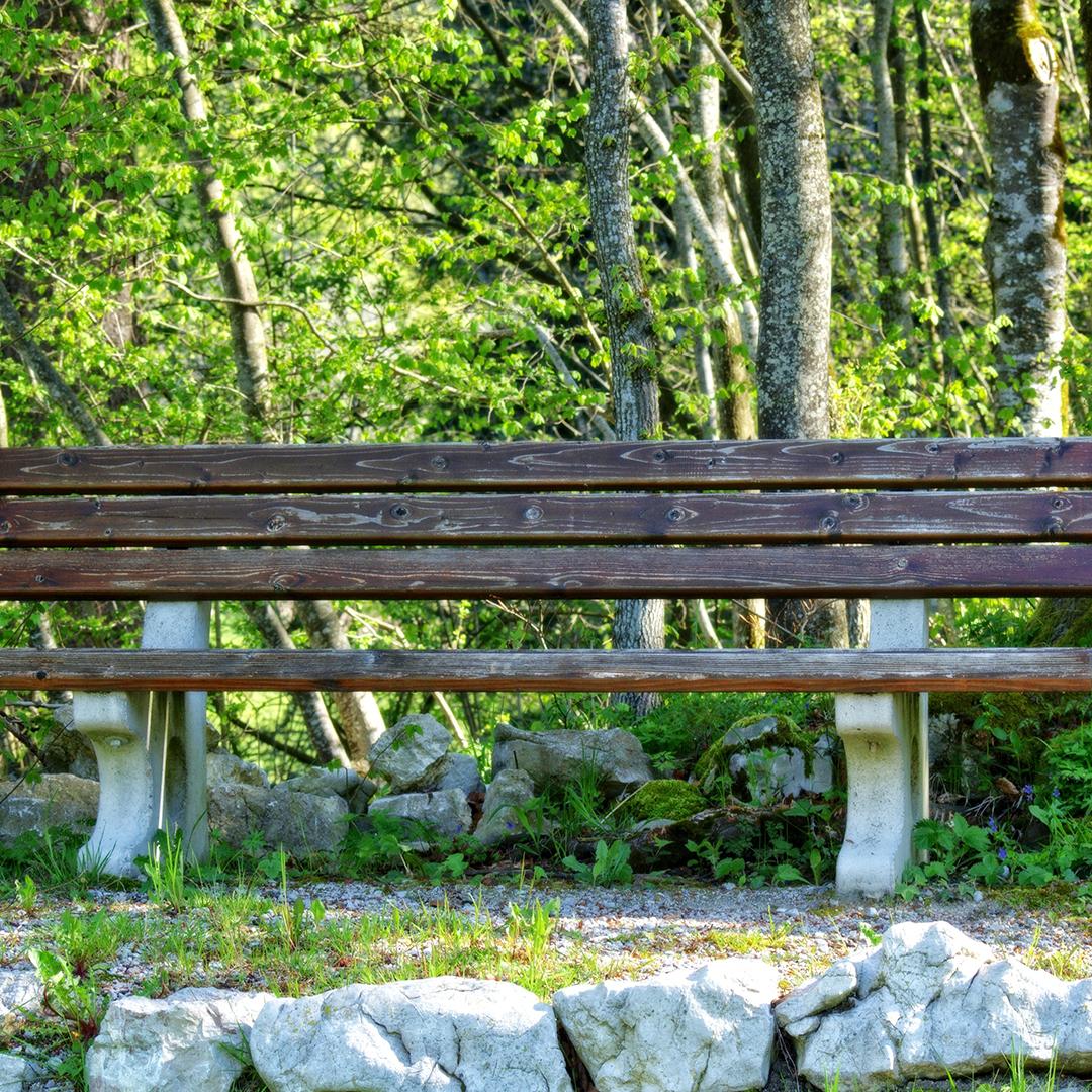 turystyka-i-rekreacja-nasz-samorzad-tarnowskie-gory